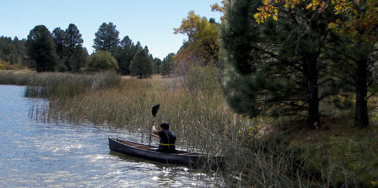 Canoeing2K161010ForWeb-768x382