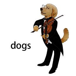 犬ビオラ.jpg