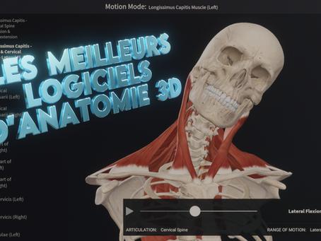 TOP 5 : les meilleurs logiciels d'anatomie 3D