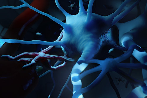Neuron and Glial Cells 2001 X 2126 300 dpi