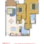403_TULIP_3.png