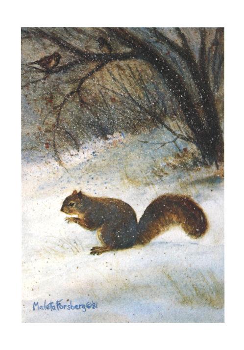 Winter Nutcracker