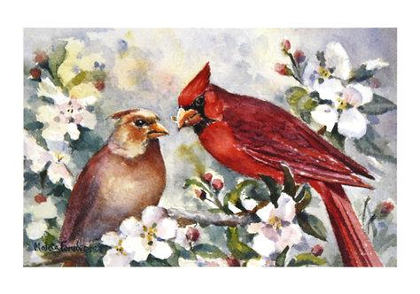 Cardinals Courting