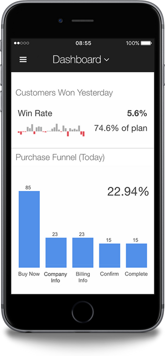 Executive Dashboards on the Go