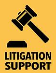 Litigation@0.5x.png