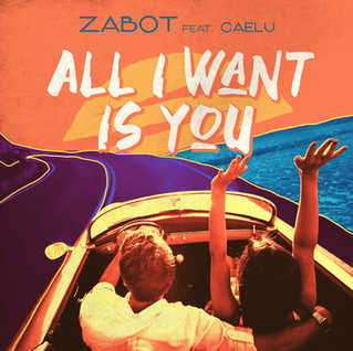 cover_ALL I WANT IS YOU.jpg