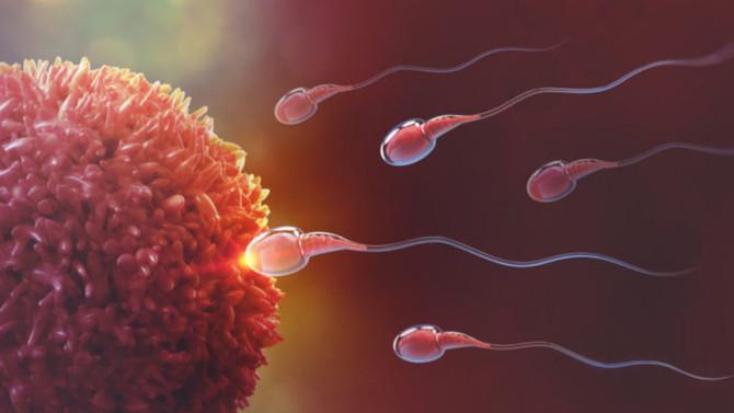Infertilidade: os aspectos psicológicos nas causas e consequências