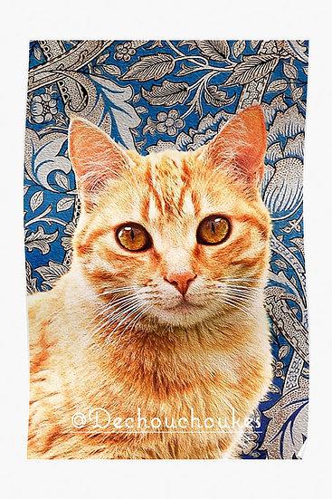 Morris Ginger - Posters