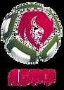 Сборня Беларуси.png