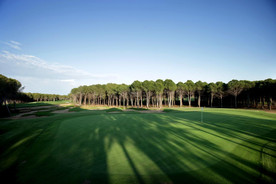 maxx-royal-golf-forestjpg