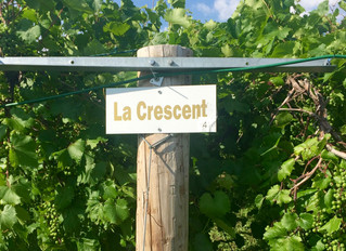 East Coast Wine News, March 18, 2019