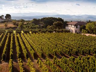 Go ahead. Bring French wine to an Italian restaurant