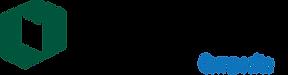 Synertech_G-300x78.png