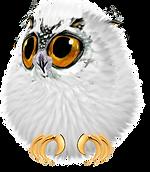 littleowl02.png