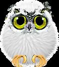 littleowl.png
