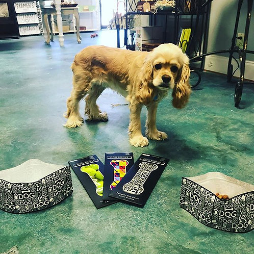 Modgy Expandible/Collapsible Dog Bowls