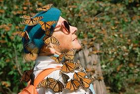 butterfly tourism2.jpg