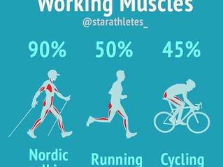 La funzione degli ormoni nell'attività fisica.