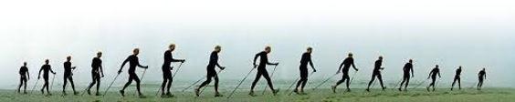 sport-nordic-walking-alessandria-asti