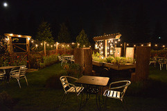 inside herb garden at night.jpg