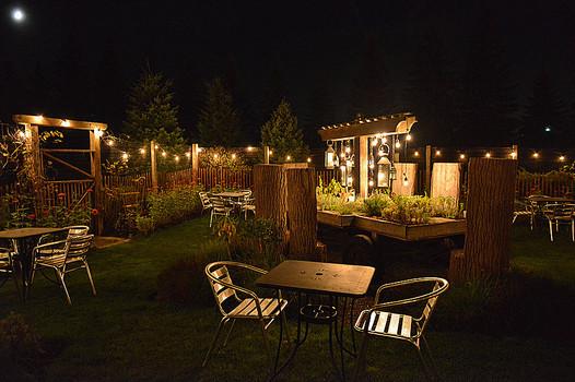 inside herb garden at night.jpg