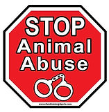 stop animal abuse.jpg
