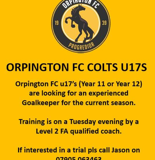 U17 Colts: Looking for Goalkeeper