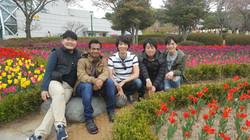 Entire lab inside tulip garden