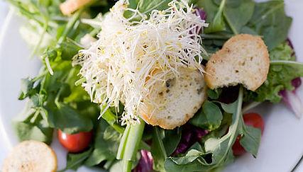 Soups & Salads.jpg
