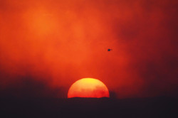 Sunsets around Bushfires