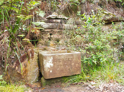Jersey Springs Water Trough