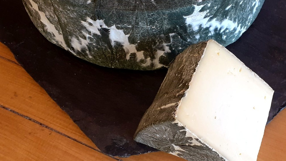 Nettle Wrapped English Cheese Cornish Cheese Yarg Nettle Leaves Hard Cheese