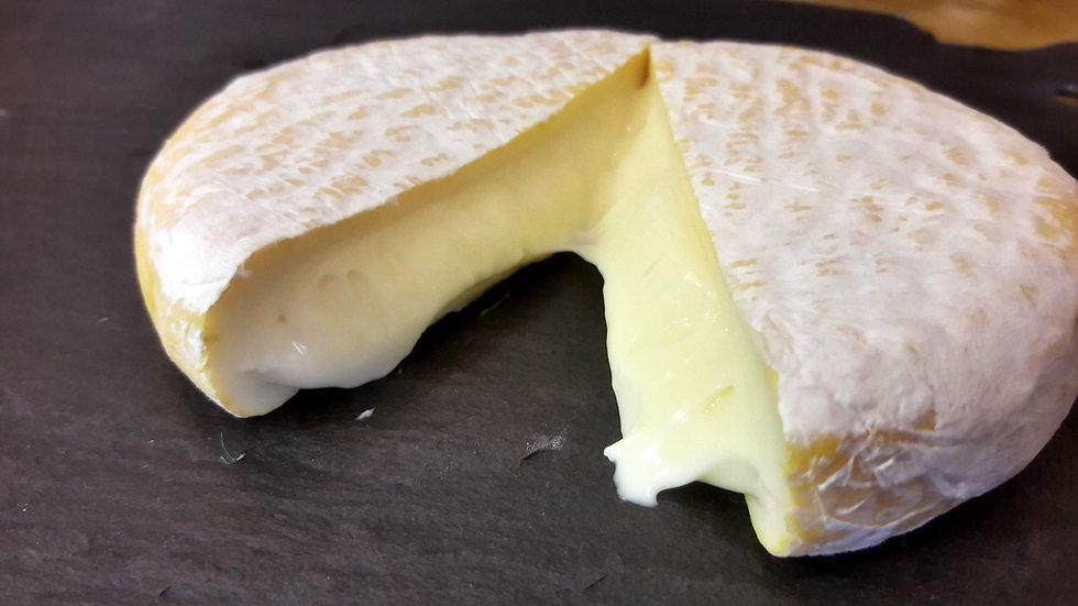 Soft Squidgy Cheese Runny Cheese Small Soft Cheese Swiss Cheese Cut Cheese Raw Milk Unpasteurised