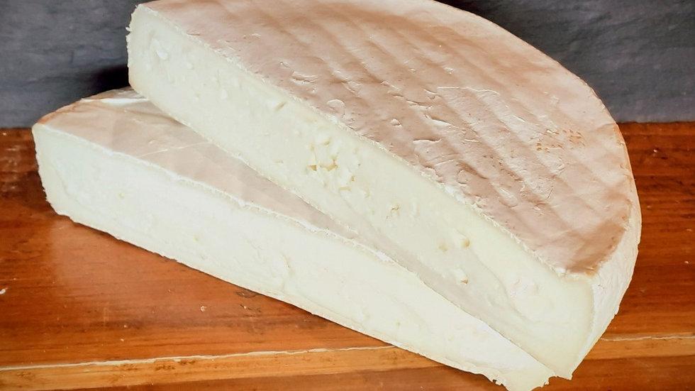 Soft British Sheep's Milk Brie Cheese White Pale Cheese White Rind Soft Bloomy Rind