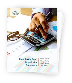 Salesforce Rightsizing Guide