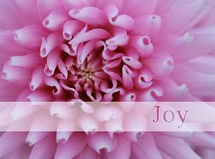 Joy mindbodymassagespa.com