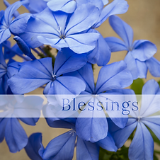 Blessings Mind Body & Massage Spa