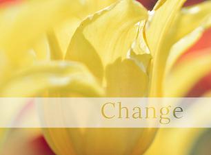 Change Mindbodymassagespa.com