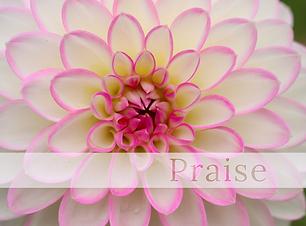 Praise Mind Body & Massage Spa