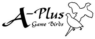 A_Plus_Game_Birds_Logo.jpg