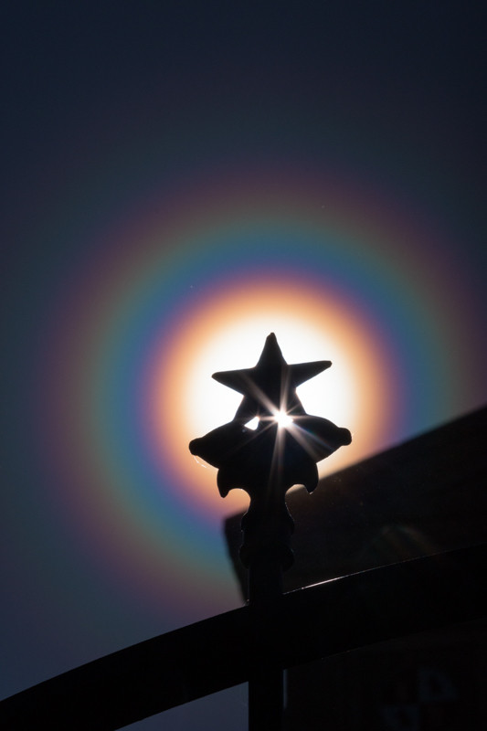 The wrought iron fences and gates surrounding the Texas Capitol are all topped with the Texas star, this one surrounded by a rainbow pollen corona.