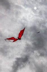 Bat Kite on a Cloudy Day