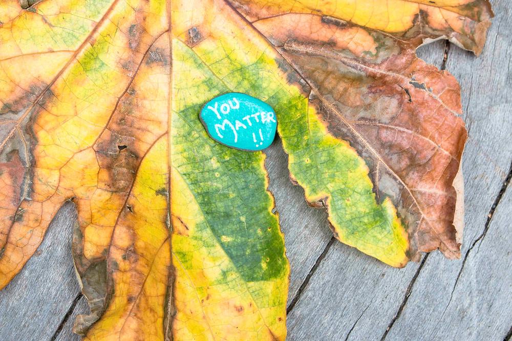 painted rock on a fallen leaf