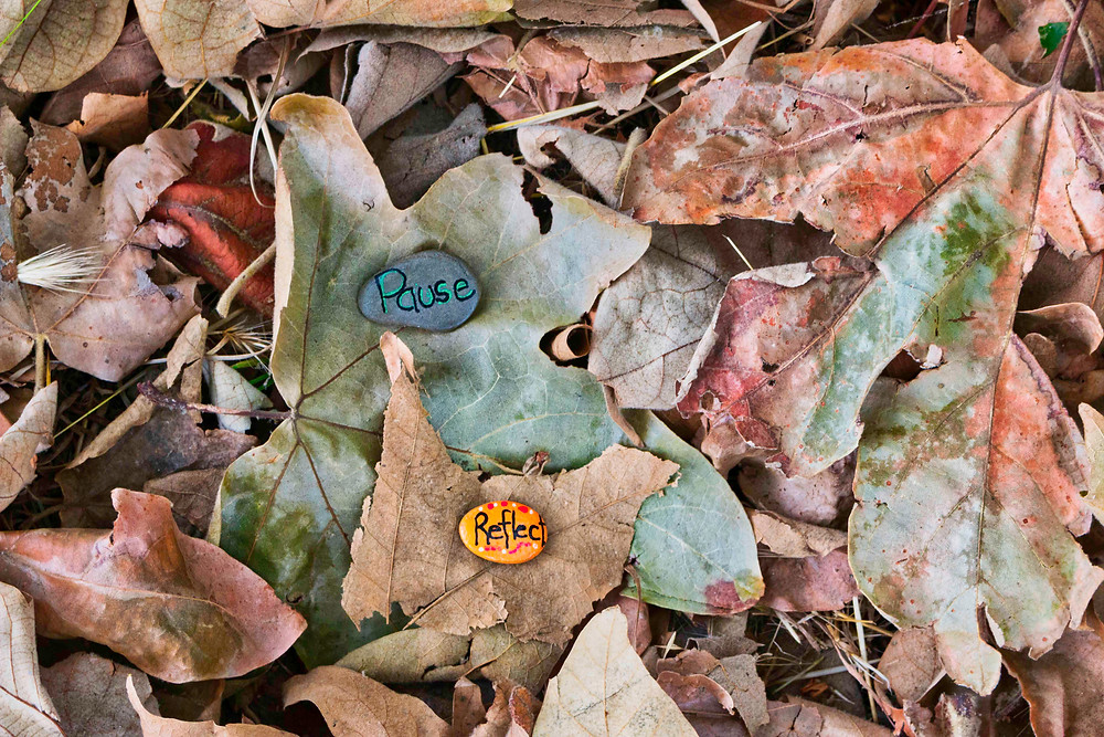 painted rocks on a bed of leaves