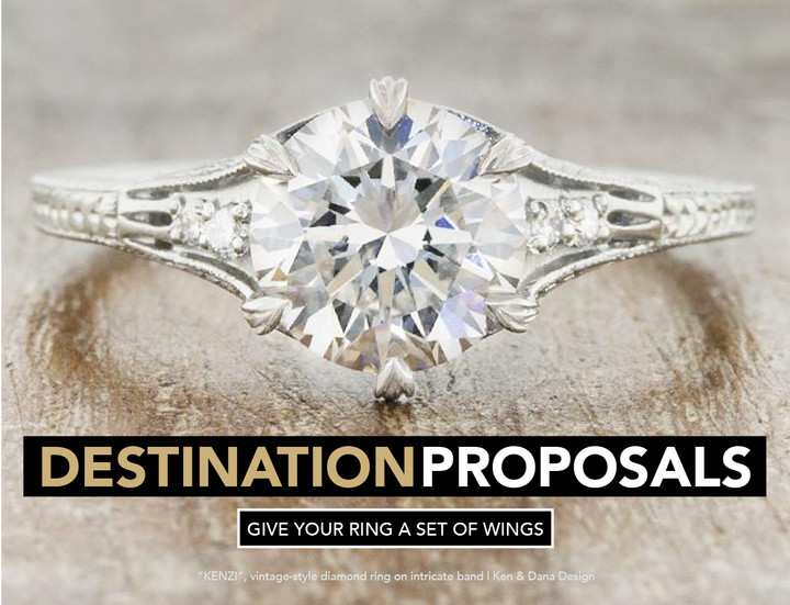 THE DESTINATION PROPOSAL