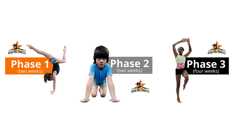 phase2-2.png