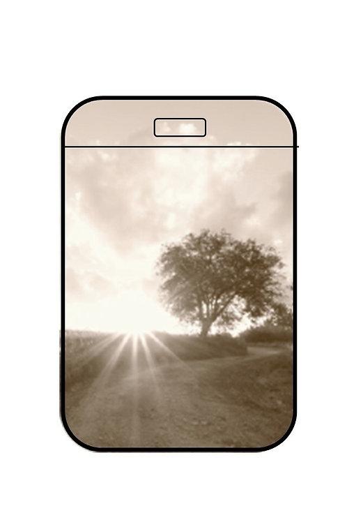 Pass Case Tree & Sun