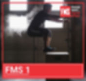 FMS 1.jpg