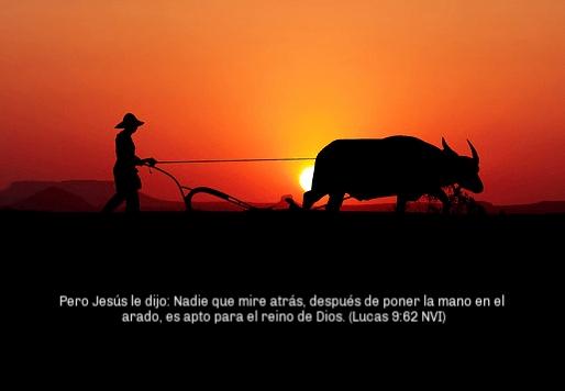 El compromiso de Seguir a Jesús