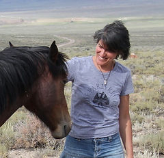 Robin McLean, fiction writer, mustangs of the Monitor Valley, Nevada